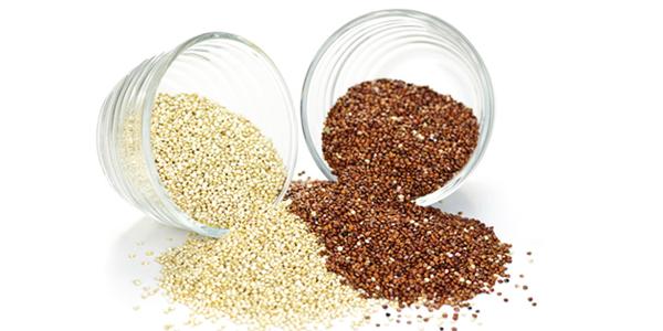 Le quinoa bienfaits et recettes mao studio for Plante quinoa